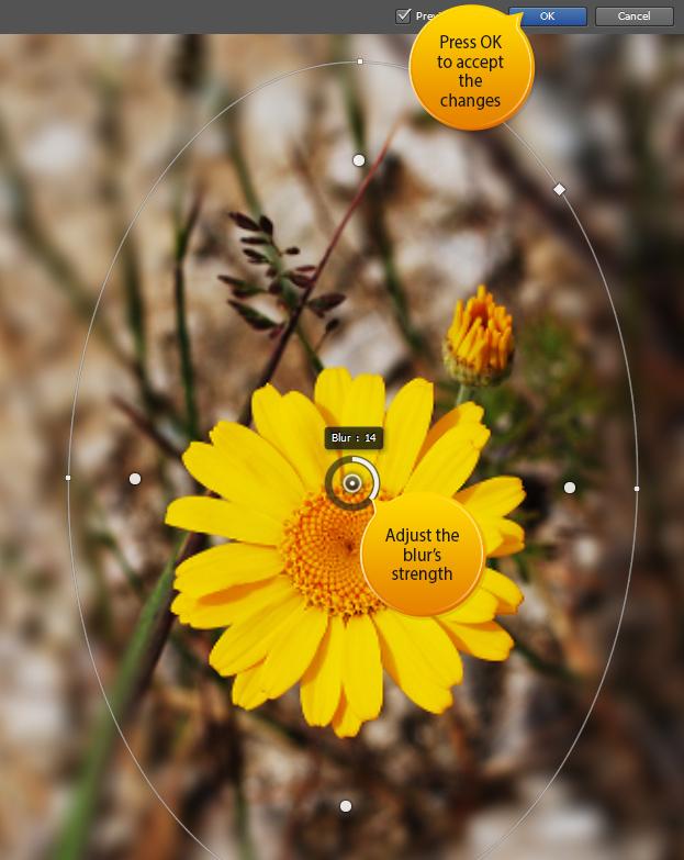 How to Use the new Iris Blur Inside Photoshop CS6