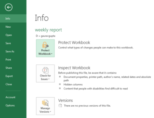 Protecting Worksheets in Excel 2013