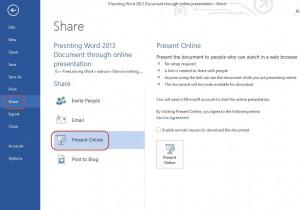 online presentation - main screen