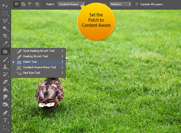 The new Content Aware Patch Tool in Photoshop CS6