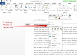 Insert Header, Footer and Page Number in Word 2013