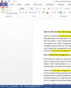 How to prevent Document Editing in Word 2013